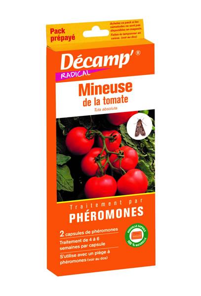 Ph romone contre la mineuse de la tomate decamp - La mineuse des agrumes ...
