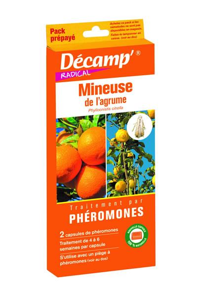 Pheromone contre mineuse agrumes decamp for Traitement contre la vrillette